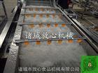 FX-600果蔬多功能蔬菜清洗机诸城放心机械