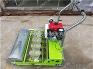 小白菜种子播种机 手推式蔬菜精播机