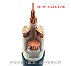 ZR-VV-3*120+1*70電力電纜