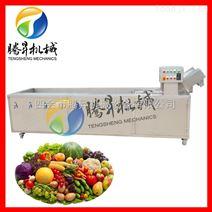 腾昇牌气泡循环清洗 新款全自动豪华型消毒洗菜机 蔬果加工设备