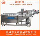 TSXQ-50厂家供应腌制黄瓜脱盐脱水设备  高品质不锈钢脱盐脱水机械