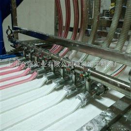 HQ-400/600全自动棉花糖浇注生产线 棉花糖浇注生产设备