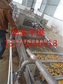 生姜专用干燥机厂家-华丰干燥