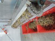 笋干脱水专用带式干燥机
