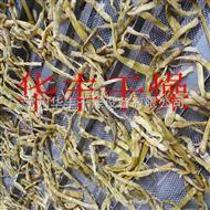 DWT竹笋专用脱水干燥设备