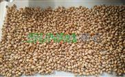 低成本可移动式豆粕微波干燥杀菌机