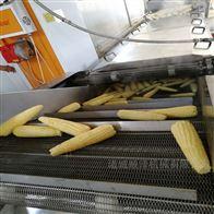 SZ1000速冻水果玉米生产加工设备