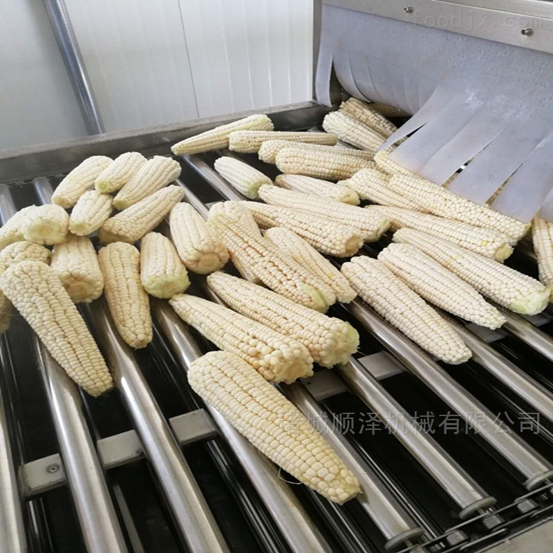 甜玉米蒸煮加工机械 固色蒸煮机