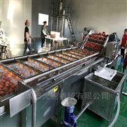 全自動噴淋式果蔬清洗設備西紅柿清洗機