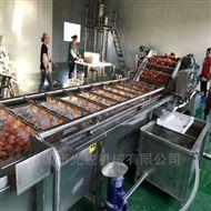 噴淋式果蔬清洗設備全自動西紅柿清洗機