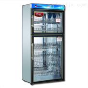 RTP360K-哈爾濱億高高溫餐具消毒柜廠家直銷