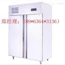 湘潭爱雪立式双门冷柜厂家批发销售