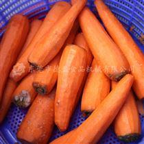 DYXP-01A萝卜削皮机 红萝卜去皮机