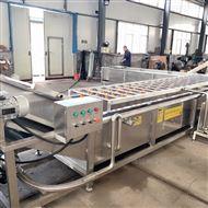 SZ4000全自动腌制金针菇清洗脱盐机 脱盐设备