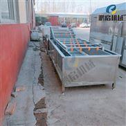 氣泡式黃瓜清洗機常年生產