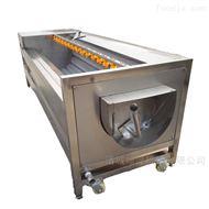 SZ 1000全自动红薯去皮清洗机 土豆去皮设备