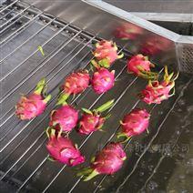 全自动杀菌洗菜机 叶类蔬菜清洗机