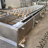 SZ4000热销气泡式高压喷淋全自动菠菜专用清洗机