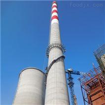 电厂烟囱爬梯防腐安装