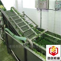 水果蔬菜清洗流水線