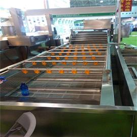 QX不锈钢净菜加工设备果蔬清洗机