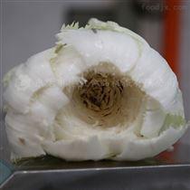 DYQX-800去白菜洋白菜大白菜芯设备