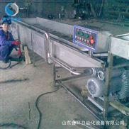 高壓氣泡多功能果蔬清洗機去泥清洗流水線