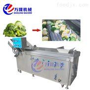 中央厨房专用设备山竹清洗机 气泡洗菜机