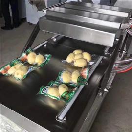 DZ-600L型多功能食品包装设备真空包装机