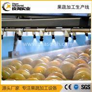 定制 全自动喷淋式清洗机 番茄汁加工设备