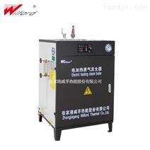 立式电蒸汽发生器