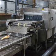 大枣清洗机生产线