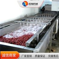 QX-6000迈旭清洗设备新疆大枣清洗机