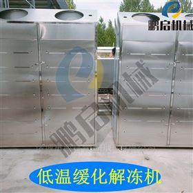 全自动牛肉解冻机低温高湿水分流水少颜色佳