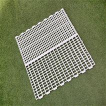 养殖用塑料漏粪板