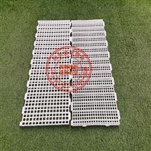 養殖家禽塑料漏糞板