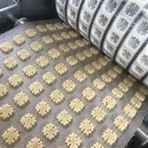 全自动蔓越莓饼干生产线 颗粒饼干成型机