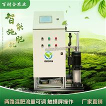 微噴滴灌智能操作兩通道水肥一體化施肥廠家