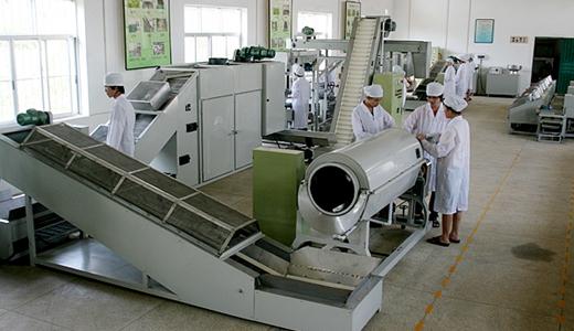 商城县全面建设茶产业 提升茶业品质