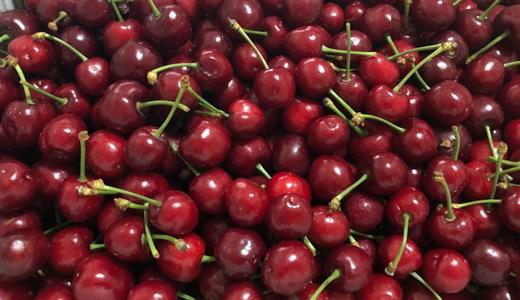当季水果大量上市 深加工提高水果资源利用率