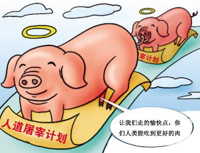 由世界动物保护协会的培训合作伙伴北京朝阳安华动物