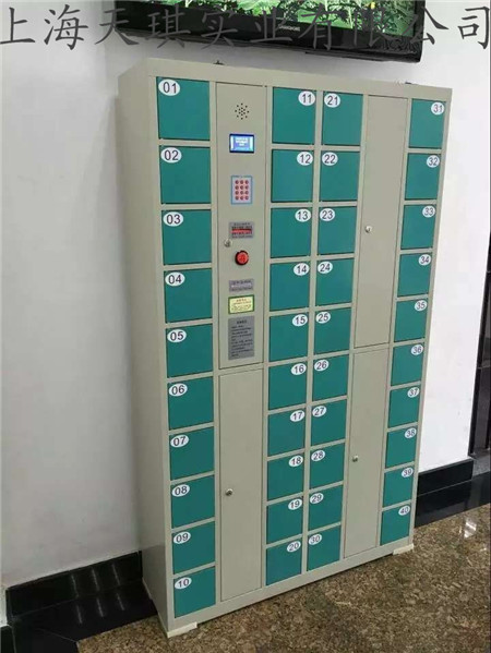 电子存储柜