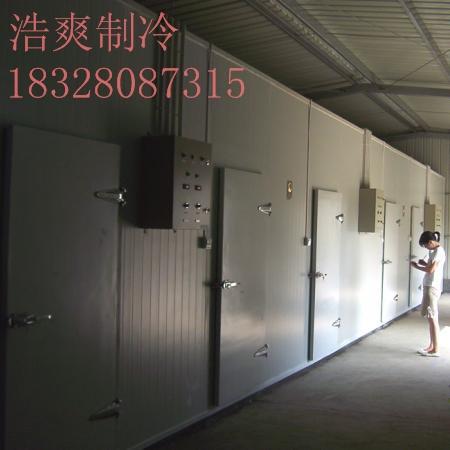 按需订制 四川制冷设备 果蔬保鲜库设计 食品冻库 大型冷库工程
