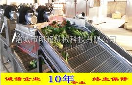 叶类蔬菜清洗机