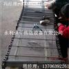 YL-WD永利烘干【优质】供应方便面蒸煮网链 蒸煮网带 耐腐蚀输送带 定制加工